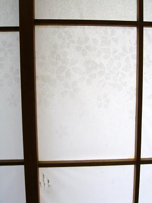 Sakurasibe1